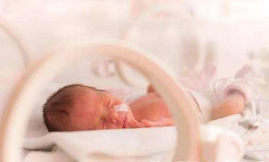 早产儿添加辅食的6个注意事项